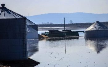 Iowa farmers are coping with low commodity prices and devastating floods, creating concerns about their mental health and well-being due to stress. (Julius Schaaf/grains.org)