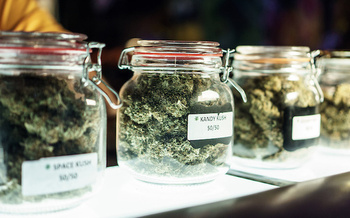 Tax revenue from regulated marijuana sales could help restore communities most impacted by prohibition. (Ayehab/Adobe Stock)