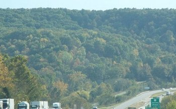 A proposed change to federal environmental policy could fast-track logging on public lands in areas such as the Mark Twain National Forest. (Lance Lowry/Panoramio/Wikimedia Commons)