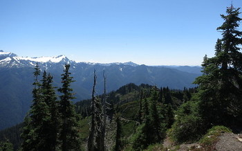 The Washington state Department of Natural Resources oversees about 2 million acres of state-owned forest land. (rnjacobs/Flickr)