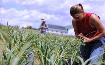 Helping new farmers successfully enter and thrive in their businesses is crucial for the future of Ohio farming. (Kelly Anderson-Cabral)