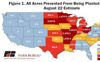 Flooding across the Midwest in 2019 made this year's corn planting the longest delayed in U.S. history. (farmbureau.org)