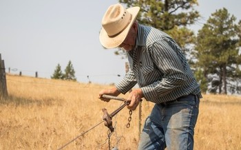 Montana ranchers say they're getting a raw deal from the four large packing corporations that control most of the beef market. (Northern Plains Resource Council)