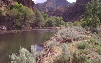 The Gila Wilderness was the first area in the United States to receive wilderness designation. (nmwild.org)