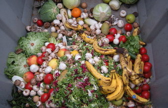 Even without a pandemic that has caused panic buying at the grocery store, it's estimated that about 40% of food produced for human consumption is never eaten and ends up in landfills where it breaks down and emits methane. (wikipedia.org)