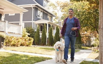 Dog owners are twice as likely to walk each day, but they walk an average of three minutes less than other daily walkers. (AdobeStock)