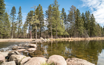 Conservation groups hope that any bonding bill this year will include more money to protect Minnesota's natural resources, such as the Mississippi River headwaters. (Adobe Stock)