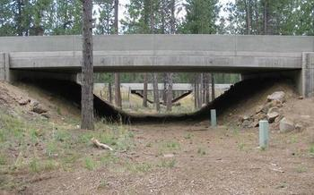 Wildlife crossings for U.S. Highway 97 in central Oregon could serve as templates for the rest of the state. (Simon Wray/ODFW)