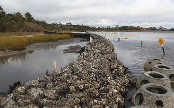 Living shorelines such as this oyster reef barrier in North Carolina protect against erosion while providing habitats for wildlife. (U.S. Marine Corps)