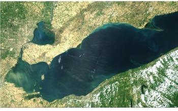 A June 20 satellite image of Lake Erie's Western Basin. (NOAA)
