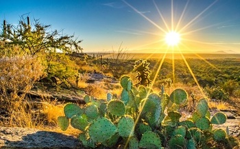 The number of days in Arizona with extreme heat - at or above 110 degrees - was 24 in 2019, up by more than 60% since the 1970s. (Nate Hovee/Adobe Stock)