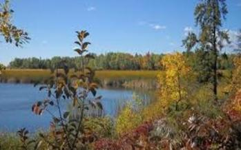 Voyageurs National Park is one of six national park sites in Minnesota. (NPS.gov)