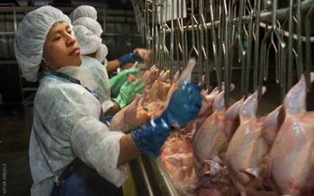 Virginia's new workplace safety rules are expected to help poultry workers who have been hit hard by coronavirus outbreaks. (Earl Dotter/Oxfam America)<br /><br />