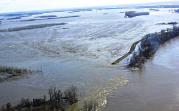 Landowners in southern Illinois continue to struggle with flooding after a 2016 breech in the Len Small Levee. (IDNR)