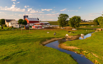 Agriculture accounts for 93% of the nitrogen pollution reductions needed to meet Pennsylvania's Clean Water Blueprint commitments. (asafaric/Adobe Stock)