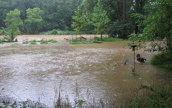 More flooding is just one of the effects of severe weather events seen in Virginia in the last 20 years. (Wikimedia Commons)