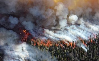 Smoke from wildfires can cause inflammation, irritate the lungs and affect the immune system. (Pixabay)