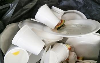 Some environmental groups say the new Maryland law banning polystyrene cups and containers represents a major shift toward getting rid of single-use plastic altogether. (Adobe Stock)
