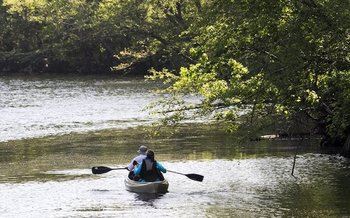Paddlers make their way along the Waccamaw River picking up trash near Conway, S.C. (Jason Lee/JLEE@THESUNNEWS.COM)