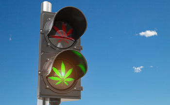 Five states, including Montana, broadened their marijuana-use laws on Tuesday. (Maksym Yemelyanov/Adobe Stock)