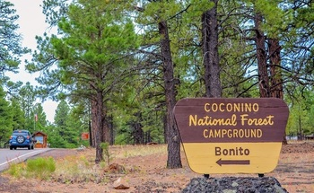 The Coconino National Forest in north-central Arizona is part of more than 11 million acres of woodlands in the state managed by the U.S. Forest Service. (Wikimedia Commons)