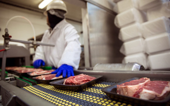 Hundreds of workers contracted COVID-19 at the second largest pork-processing plant in the country. (Adobe Stock)