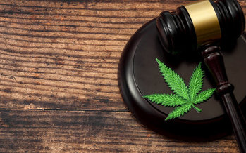 This fall, South Dakota became the first state to endorse two marijuana ballot questions in the same election. However, there are still deep divisions over whether to move forward on legalizing the drug. (Adobe Stock)