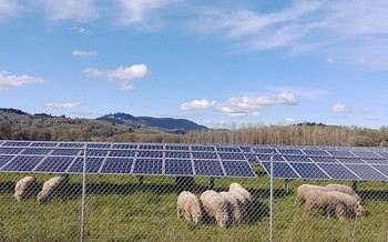Developing enough solar energy on farms to generate a fifth of the country's electricity needs could create 100,000 jobs. (Sean Nealon/Oregon State University)