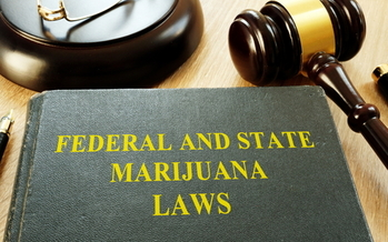 With U.S. cannabis sales hitting $20 billion last year, Virginia joined four other states considering bills to legalize marijuana. (Adobe Stock)