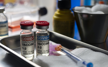 Twenty-six states plus Washington D.C. are already allowing some or all of their school employees to get the COVID-19 vaccine. (felipecaparros/Adobe Stock)