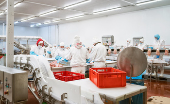 More than 300 meatpacking and processing workers in the United States have died of COVID-19 since the pandemic began. (Adobe Stock)