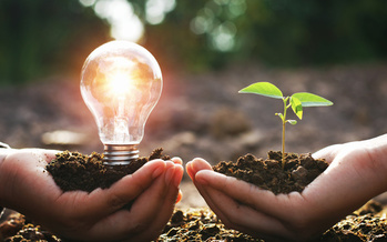 According to the International Energy Agency, electricity generation from renewables will increase by 50% in the next five years. Student leaders in Florida hope their universities will commit to using them in the next two decades. (Adobe Stock)