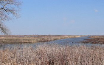 H2Ohio is funding a project to reconnect 173 acres of Magee Marsh to Lake Erie. (Dakota Calloway/Flickr)
