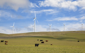 Washington state lawmakers passed measures that move it closer to a clean energy future this session. (jpldesigns/Adobe Stock)