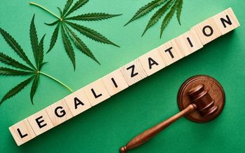 Because Minnesota's constitution doesn't provide for statewide ballot initiatives, issues like marijuana legalization have to go through the Legislature. (Adobe Stock)