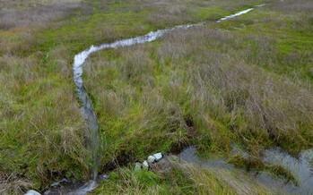 Ephemeral streams are considered the backbone of a watershed. (bgwashburn/Flickr)