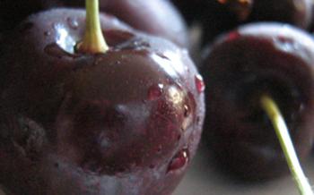 PHOTO: Cherries photo credit: Mary Anne Meyers