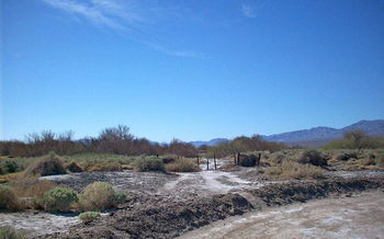PHOTO: Tule Springs