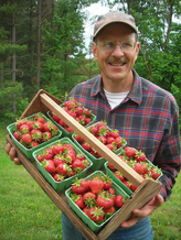 PHOTO: Ron Meyer holding strawberries. Photo credit: Mary Meyer.