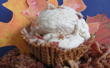 PHOTO: Bacon Ice Cream. Courtesy of Minnesota State Fair.