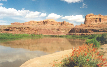 PHOTO: The Lower Colorado River at Utah's Gold Bar Campground. Photo credit: A.E. Crane, America's Byways.