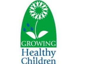 PHOTO: W.Va. Healthy Kids And Families Coalition logo.
