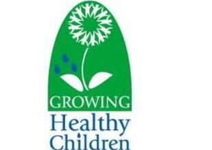 PHOTO: W.Va. Healthy Kids And Families Coalition logo.