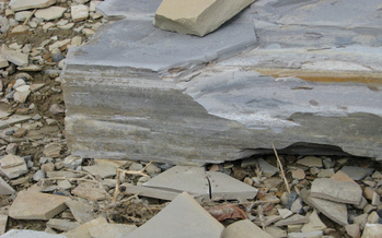 Photo: Oil shale rock, Roan Plateau, CO. Courtesy Colorado Environmental Coalition.
