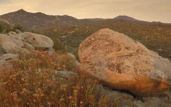 Beauty Mountain.
