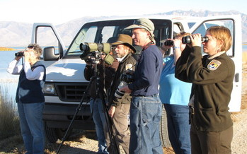 PHOTO: It's always a good day for bird-watching at the Bear River Migratory Bird Refuge near Brigham City – and it'll be open this Fri. and Sat. Courtesy of U.S. Fish & Wildlife Service.