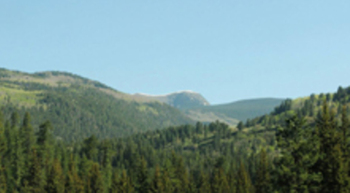 Santa Fe National Forest.<br />Photo Courtesy: Liliana Castillo, Conservation Voters New Mexico.<br />
