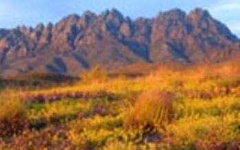 PHOTO: Hispanic organizations in New Mexico are expressing support for an Organ Mountains Desert Peaks national monument.<br />Courtesy of:  Mike Groves.<br />