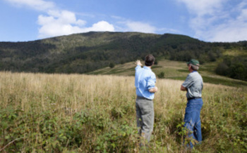 PHOTO: More than 600 acres of Grassy Ridge land was purchased recently for conservation. Courtesy of Blue Ridge Forever.