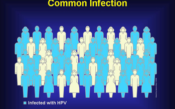 At least 70 percent of sexually active persons will be infected with genital HPV at some time in their lives. Courtesy of: National Cancer Institute